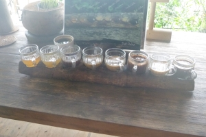 Our samples from the coffee plantation.